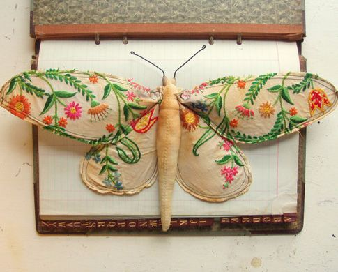 Mr Finch linen moth