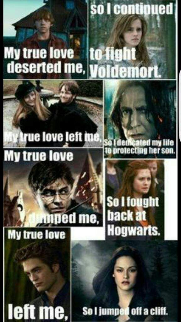 Why Harry Potter Is Better Than Twilight Harry Potter Amino Potterhead Org Harry Potter Twilight Harry Potter Memes Hilarious Harry Potter Vs Twilight