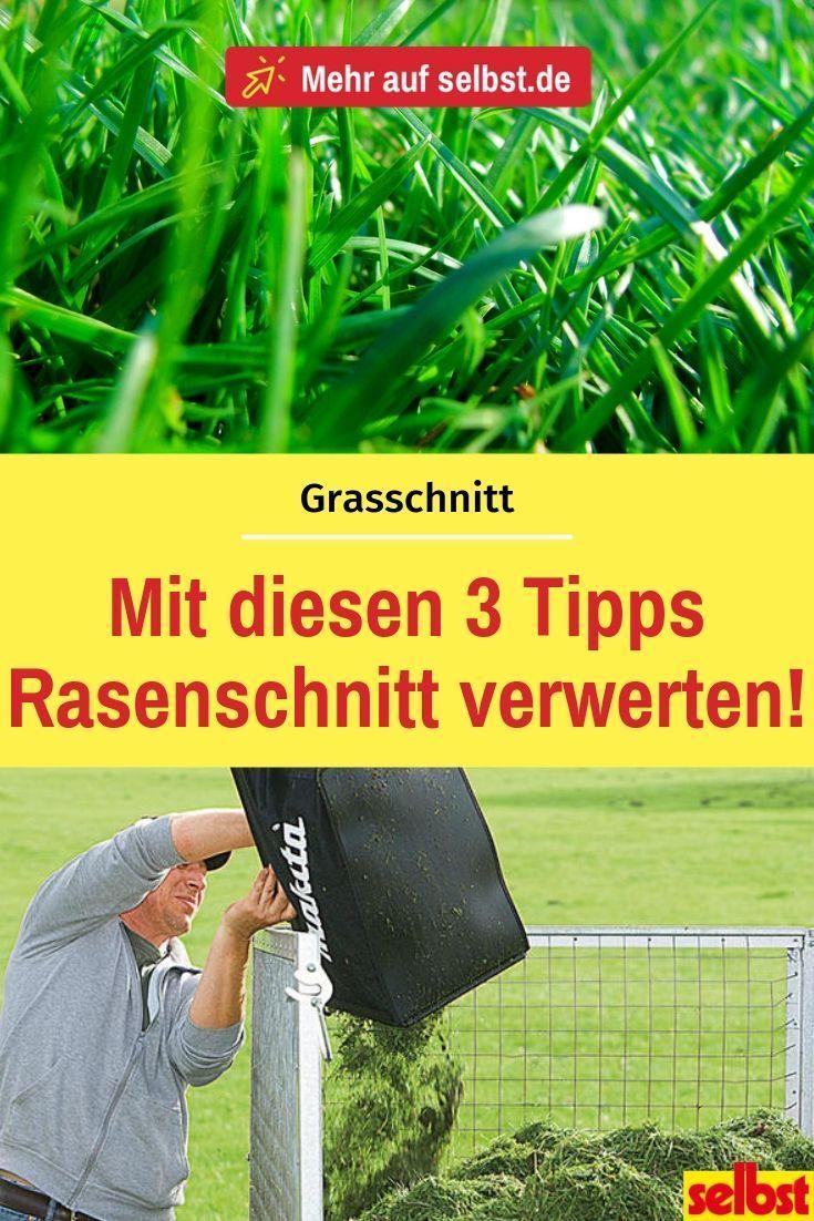 Rasen Mahen Selbst De Rasen Grunschnitt Rasenpflege