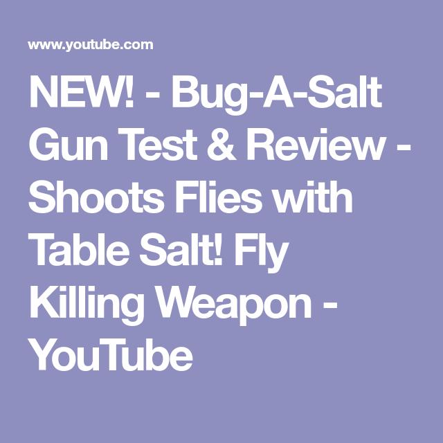 New Bug A Salt Gun Test Review Shoots Flies With Table Salt
