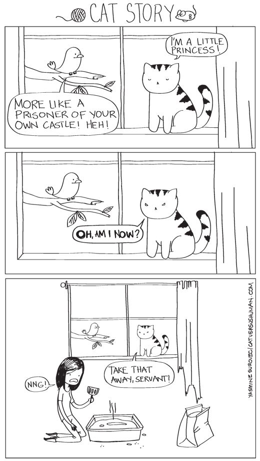 Well, this is pretty much spot on. via cat versus human