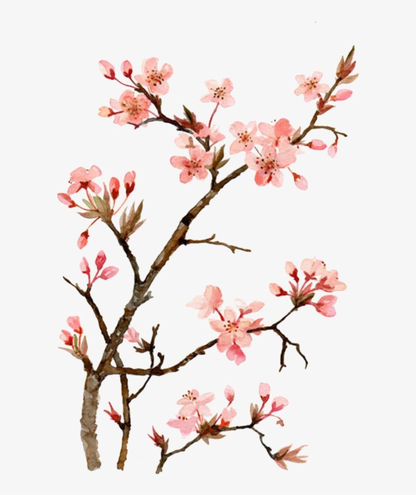 Shop My Sale 10 Off When You Buy 10 Items Https Etsy Me 32arast Etsy Keenterp Cherry Blossom Painting Cherry Blossom Art Cherry Blossom Painting Acrylic