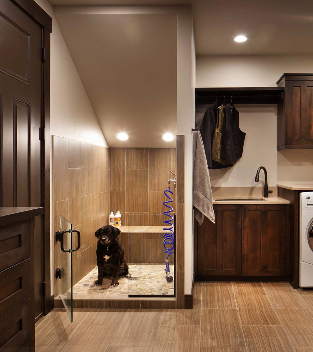 Mudroom Laundry Room Ideas Dog Shower