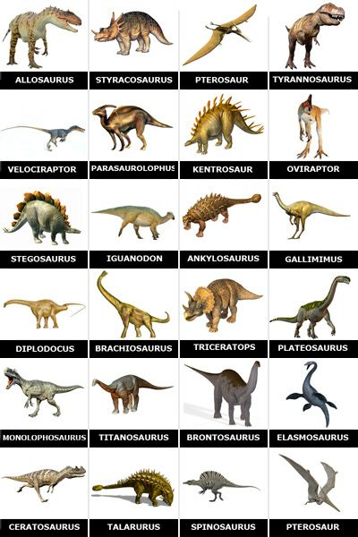 Memory Dinosaurs To Print Dinosaur Projects Dinosaur Pictures Dinosaur Posters