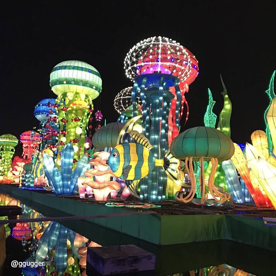 Dubai Garden Glow is the world's largest unique theme park