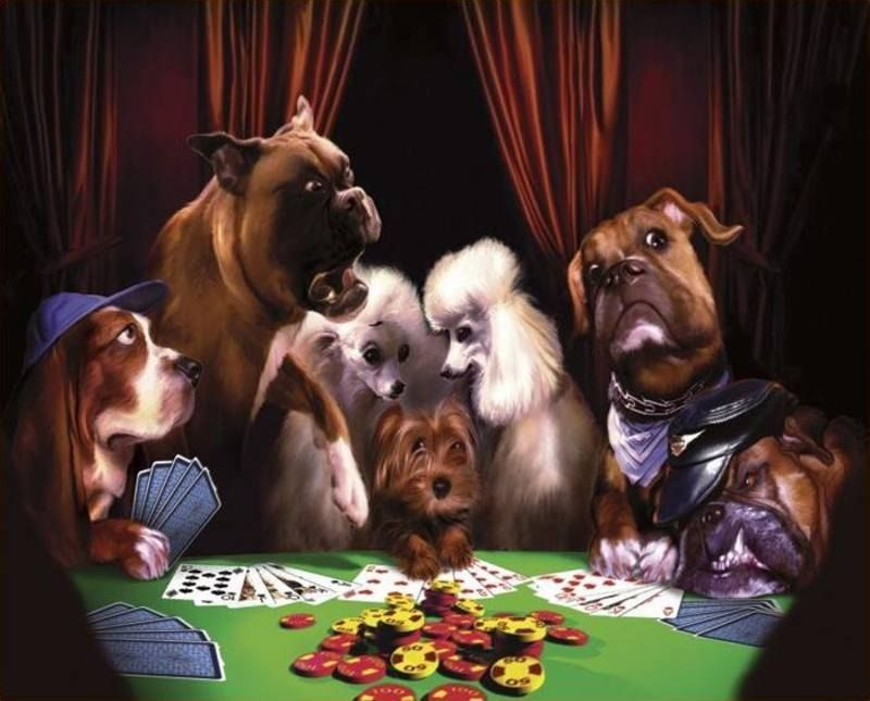 Cassius Marcellus Coolidge The Cheat Painting 50 Off Dogs Playing Poker Poster Prints Clever Animals