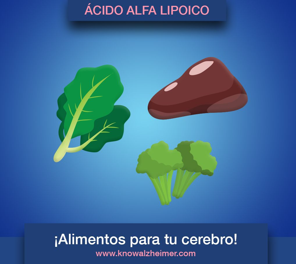 KA_Alimentatucerebro_acidoalfalipoico