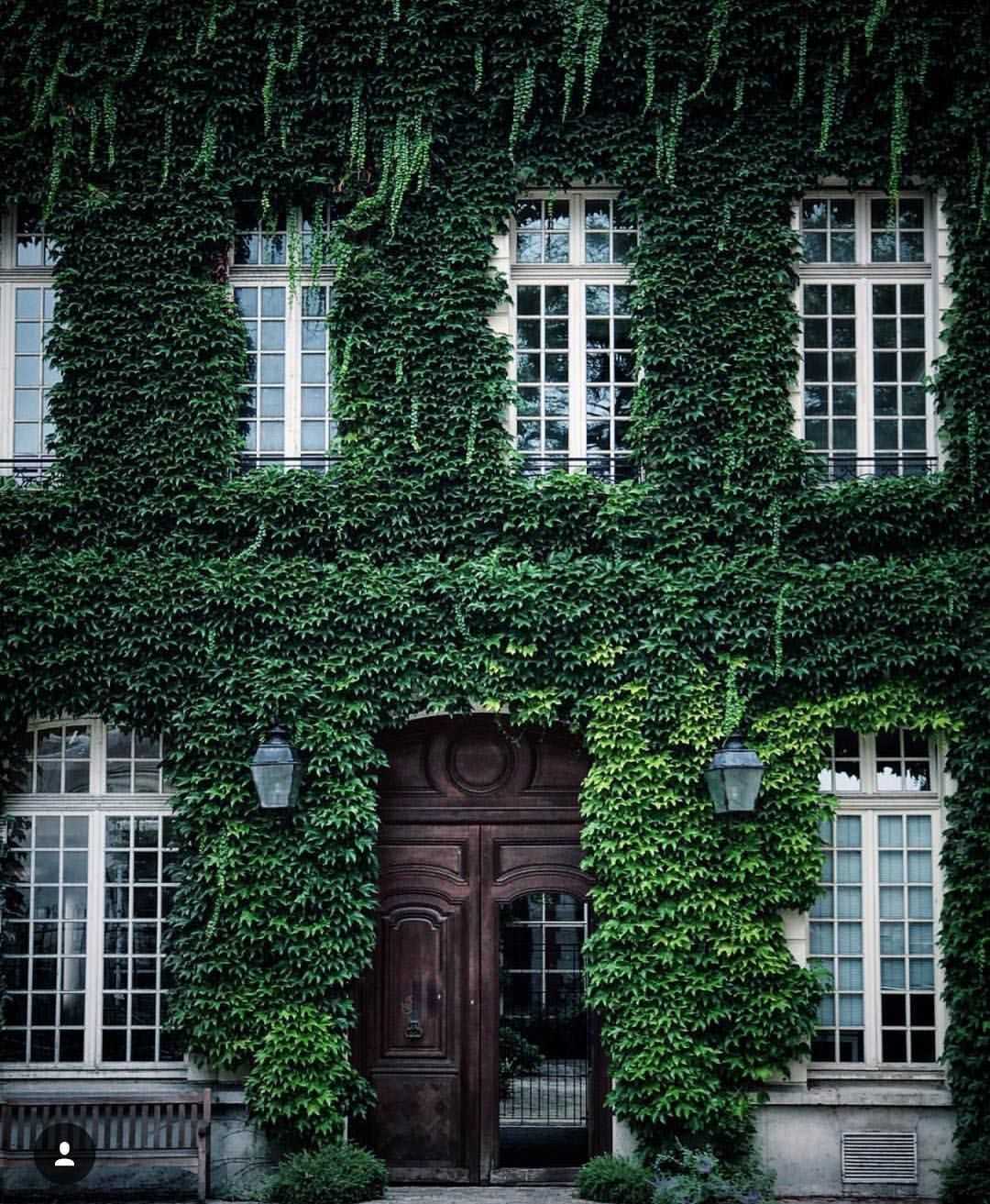 Love This Ivy Covered Front Door Exterior House Styles