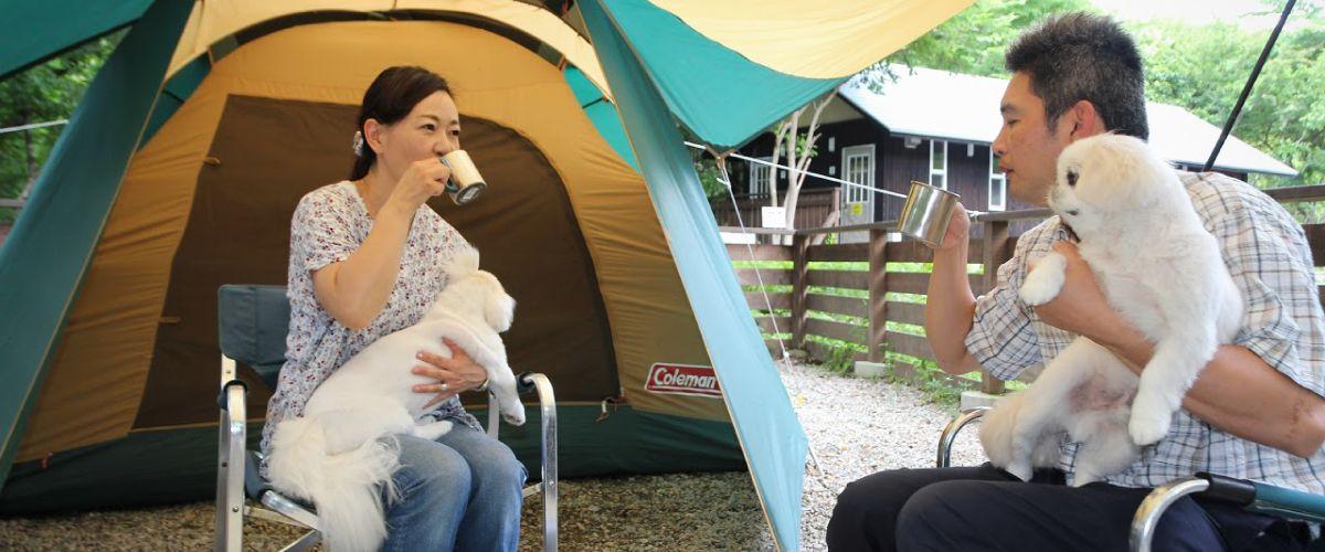 ペットとくつろげる快適キャンプ場 キャンプ ペット 天然温泉