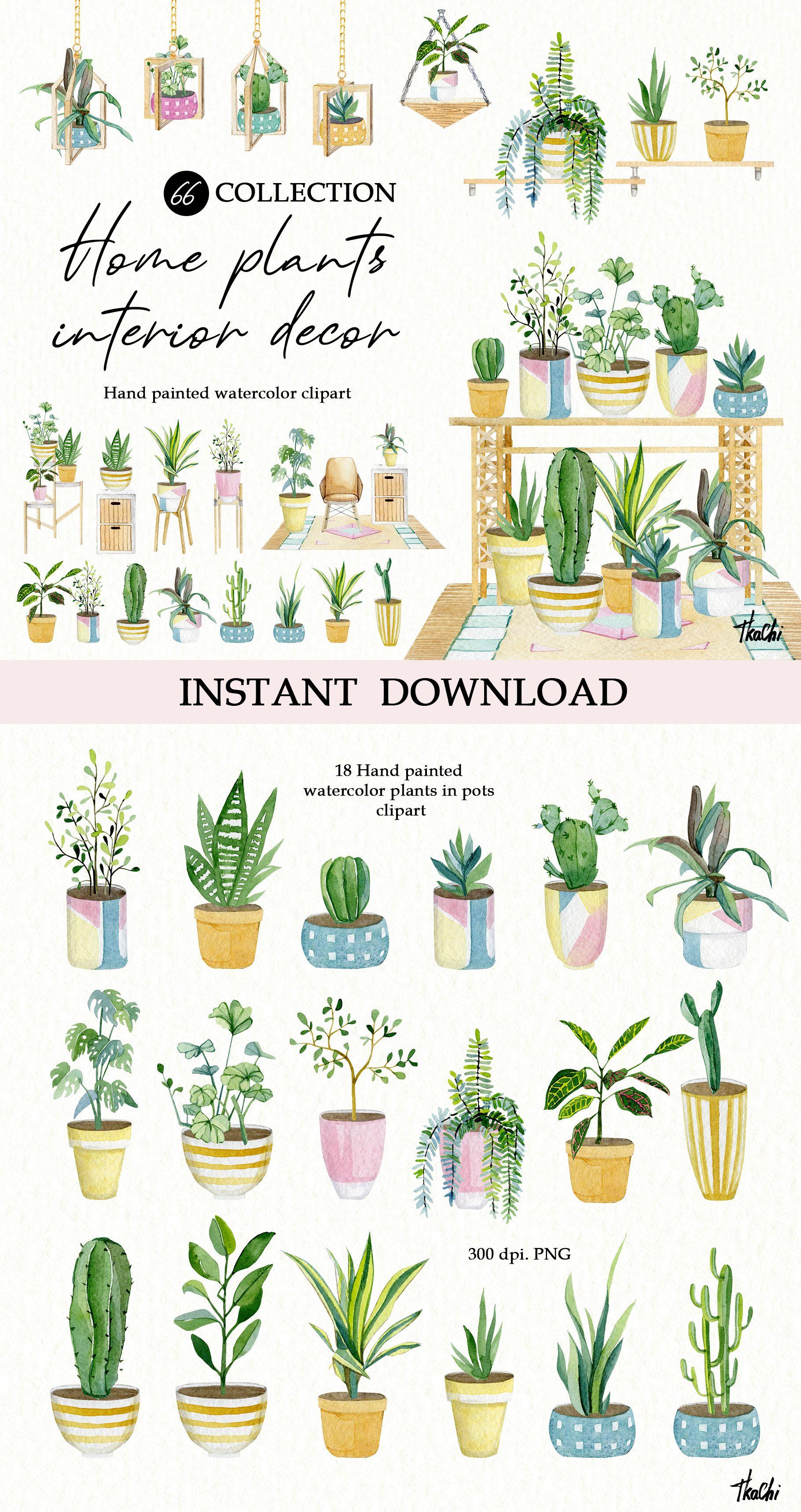 Indoor Plants Stock Illustrations – 10,227 Indoor Plants Stock  Illustrations, Vectors & Clipart - Dreamstime