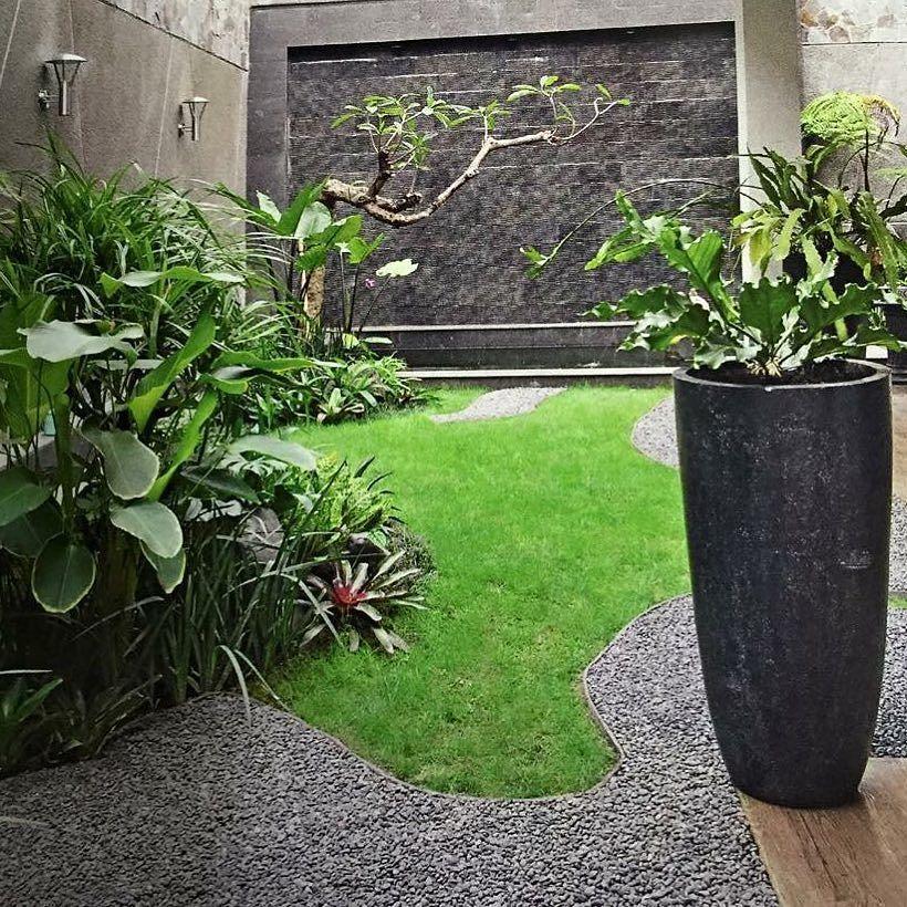 Model Taman Belakang Rumah Minimalis Lahan Sempit Outdoor