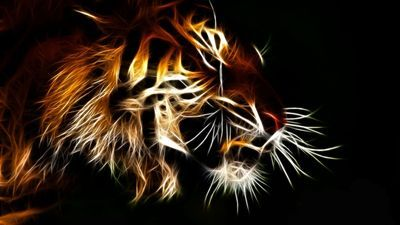 Translucent tiger wallpaper random pinterest tiger wallpaper translucent tiger wallpaper altavistaventures