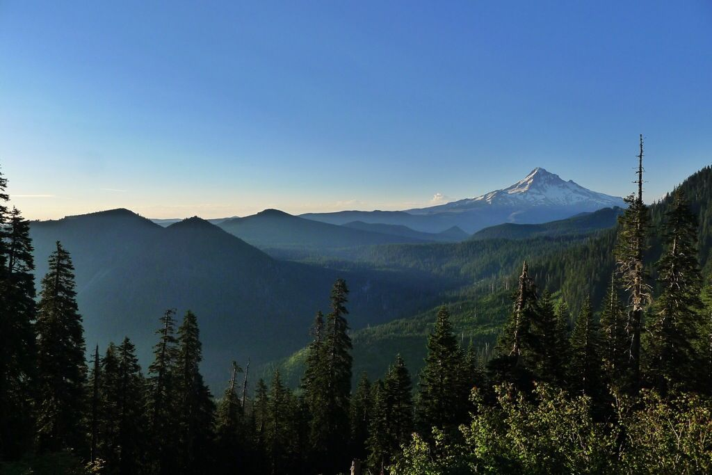 On the PCT looking south toward Mt. Hood.