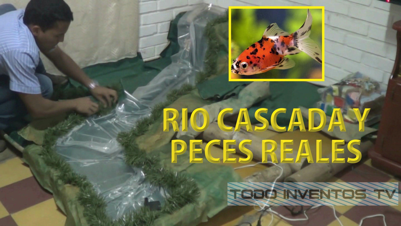 Pesebre con peces r o y cascada reales part 1 rios y for Fuentes con peces