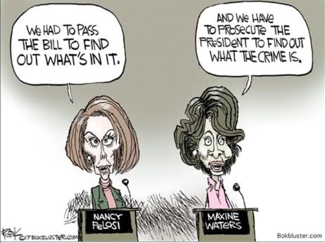 Image result for crazy democrat cartoons