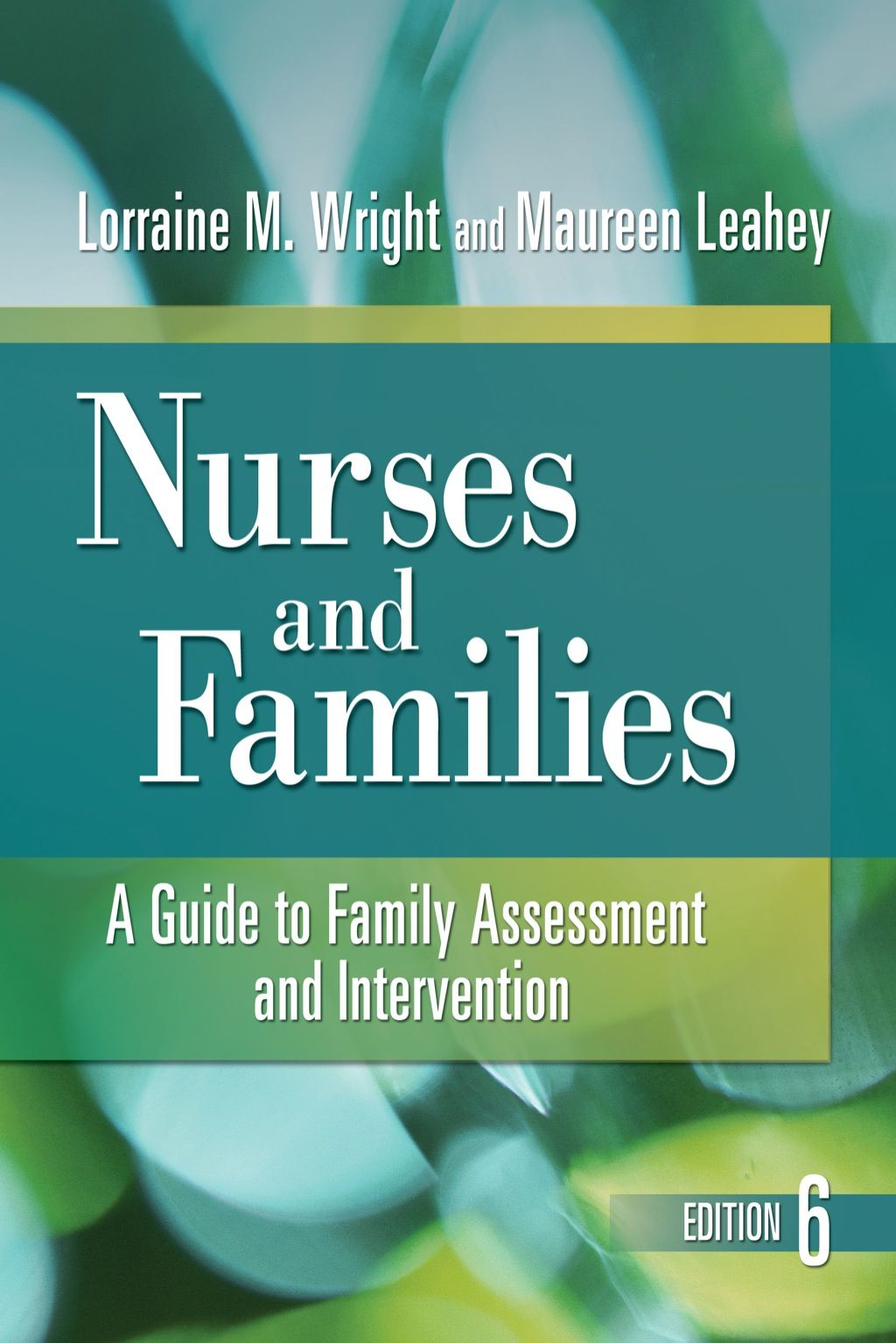 Nurses And Families A Guide To Family Assessment And Intervention