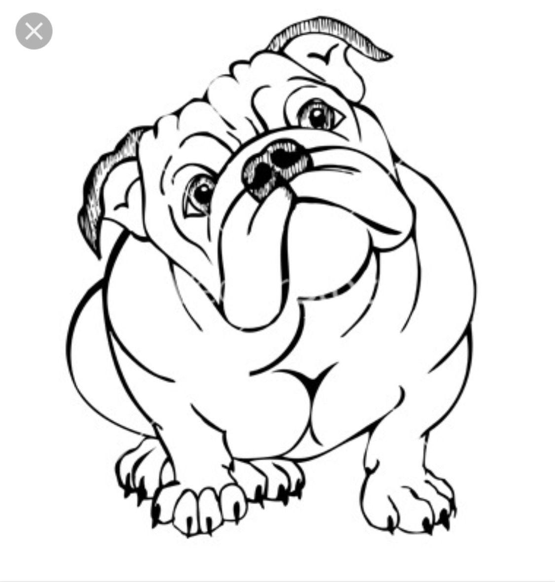 Idea By Kim Schutt On Drawing Board Bulldog Drawing Bulldog Art