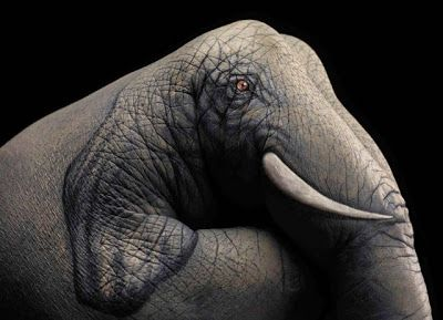 Stunning Examples Of Hyper Realistic Hand Art Cool Hd Wallpapers Picture Background Photos Image Free Hq Wallpaper Pc