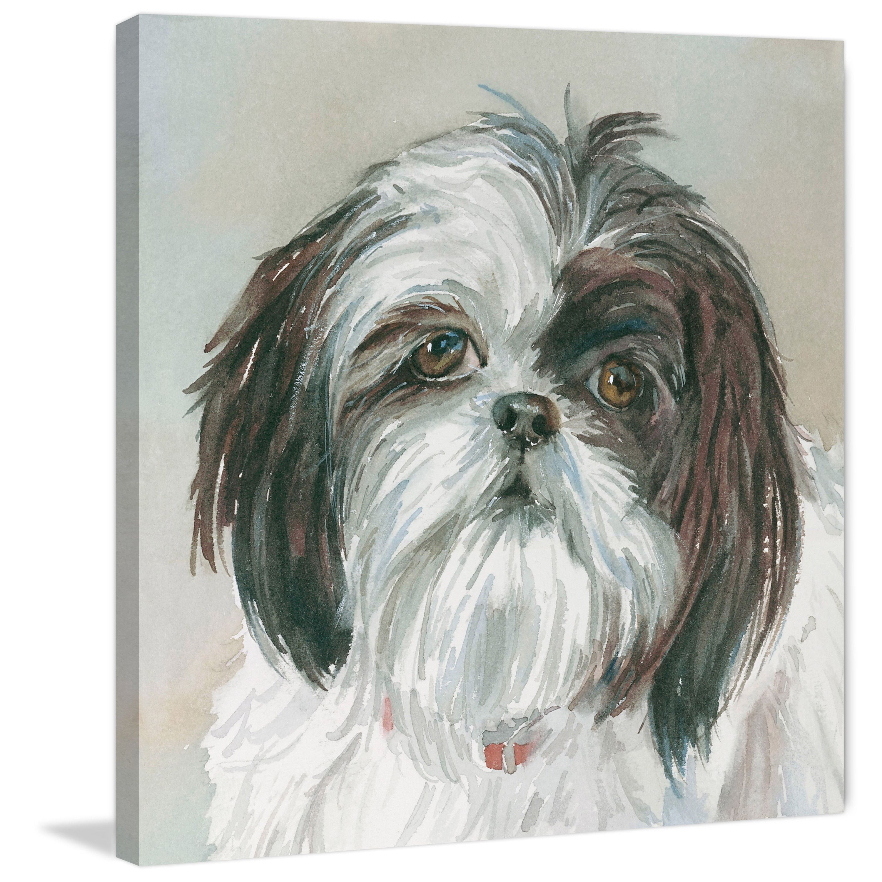 Marmont Hill Payton Shih Tzu Painting Print On Wrapped Canvas