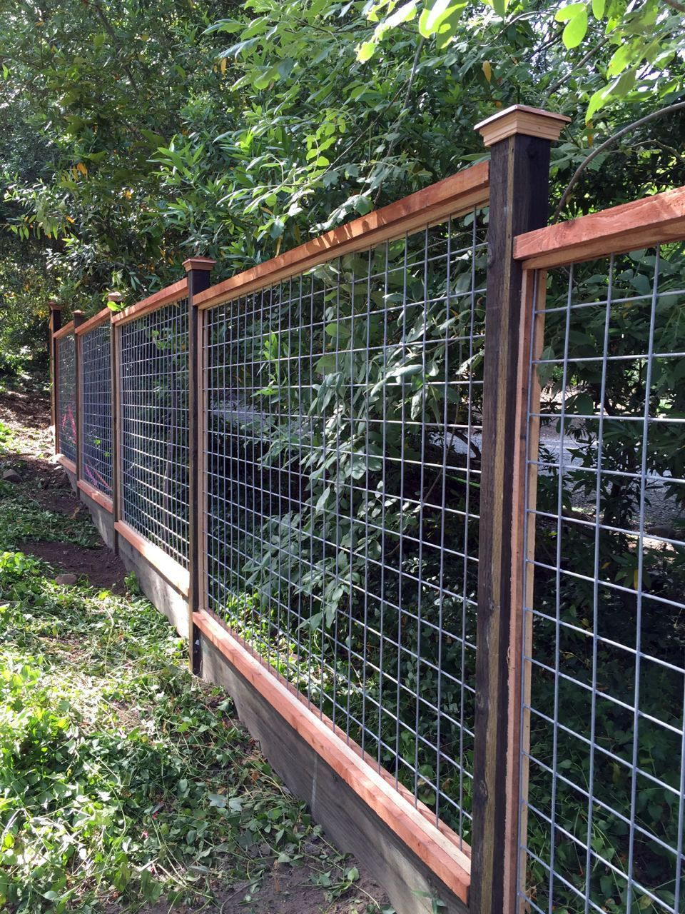 8 Beautiful Party Wall Ideas Diy Garden Fence Diy Backyard Fence Fence Landscaping