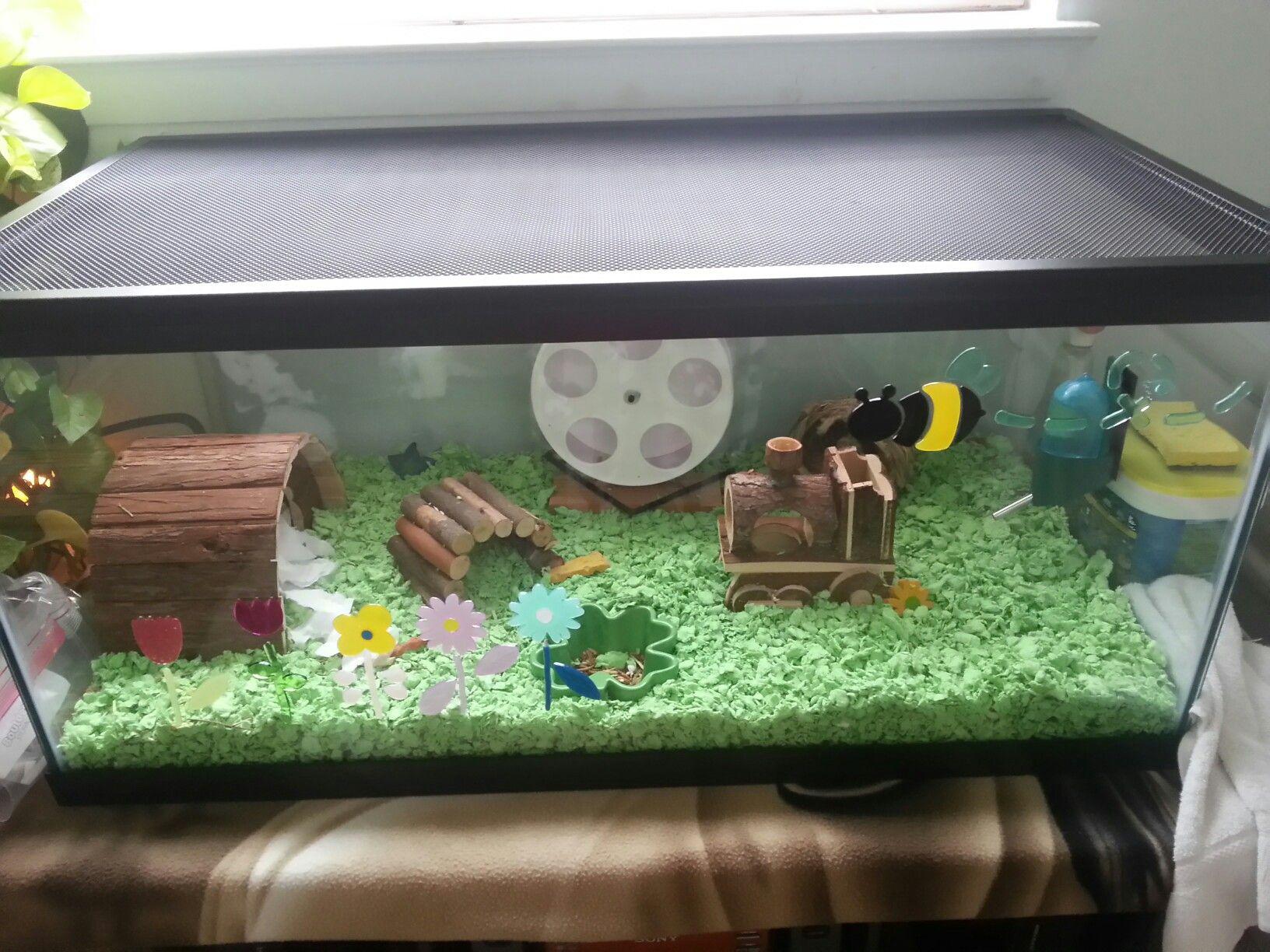 Hamster Spring Theme Aquarium Cage