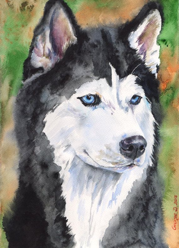 Siberian Husky Watercolor ORIGINAL Painting By
