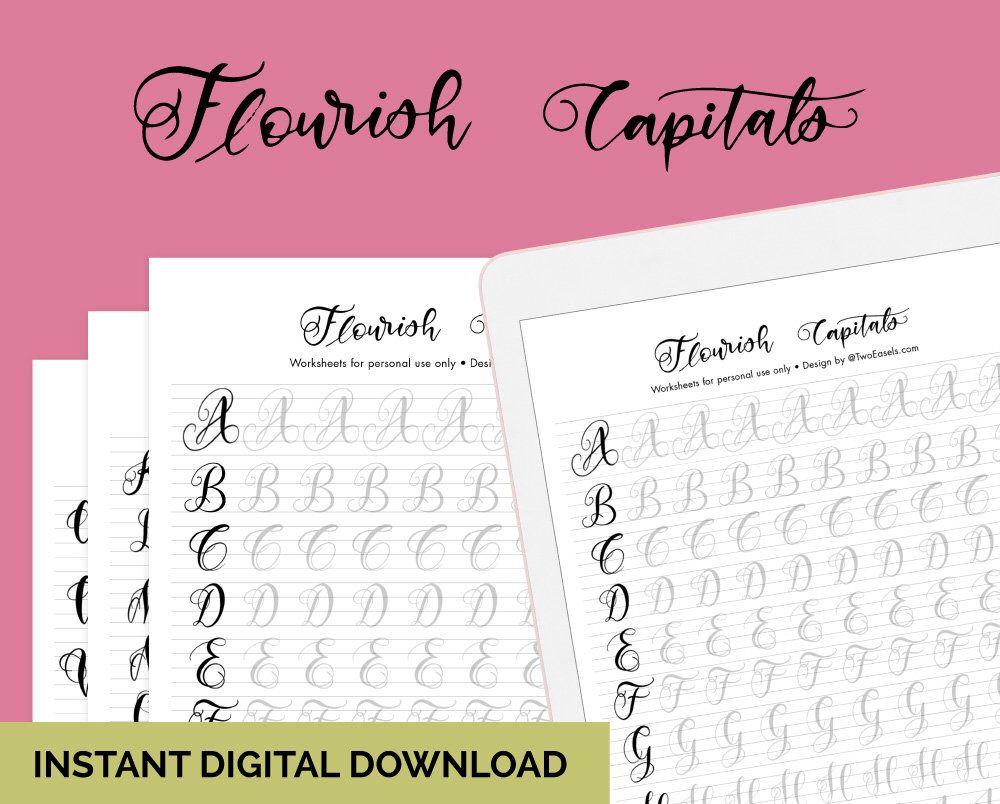 Small Flourish Capital Letters Alphabet Calligraphy Etsy Lettering Alphabet Brush Lettering Worksheet Hand Lettering Practice Sheets [ 804 x 1000 Pixel ]