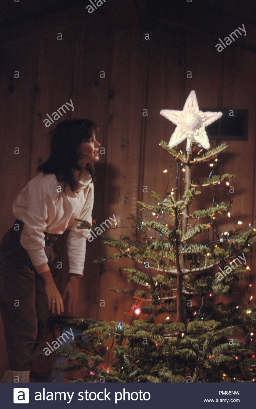 jaclyn smith christmas   Google Search in 2020 | Jaclyn smith