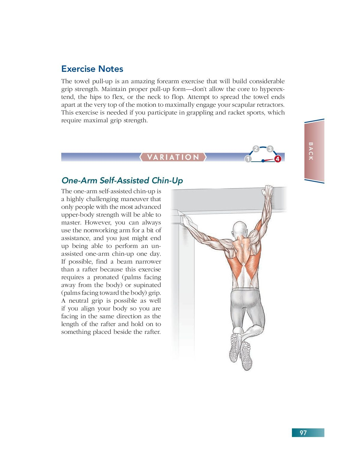 Chapter 6 Back 97 Bodyweight Strength Training Anatomy