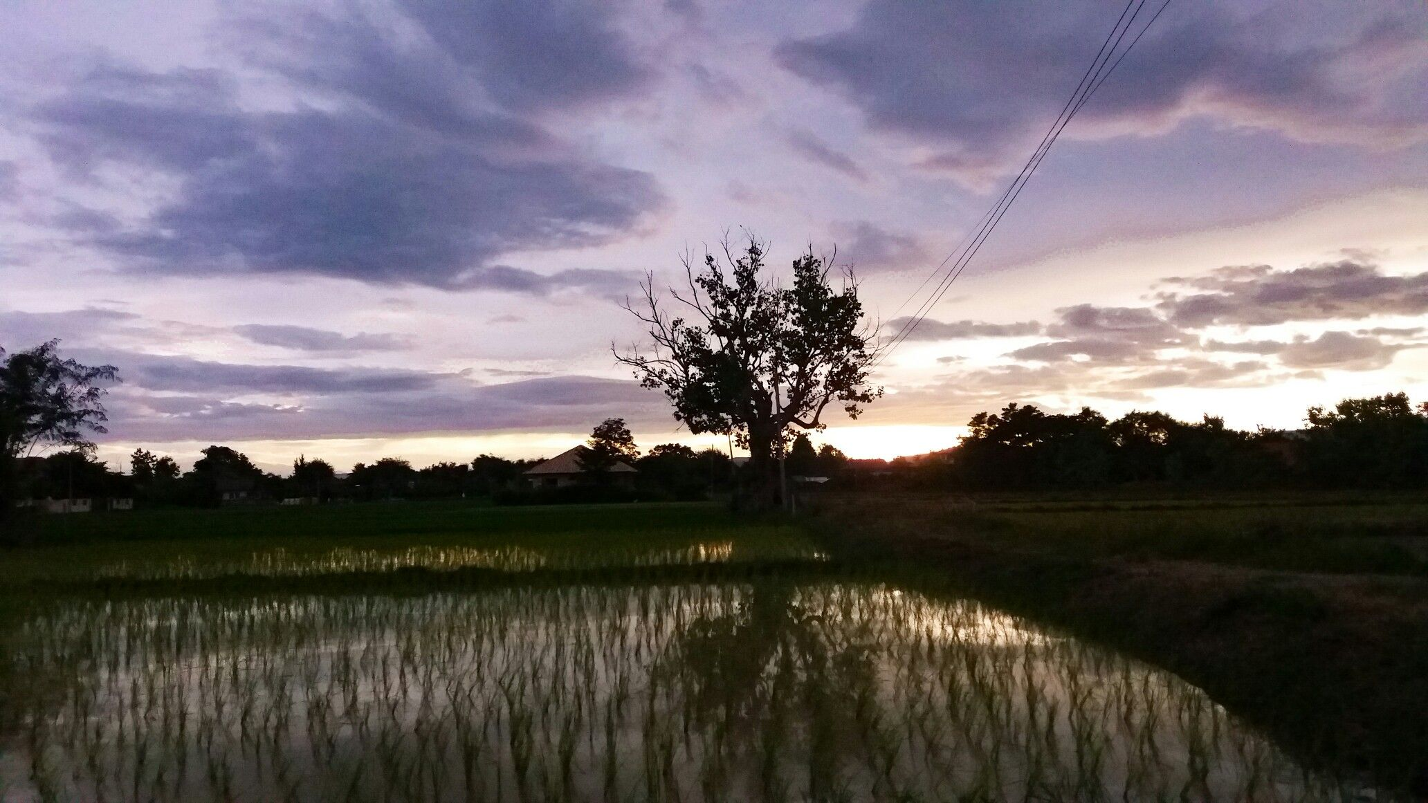 Chiang Mai purple sunset.