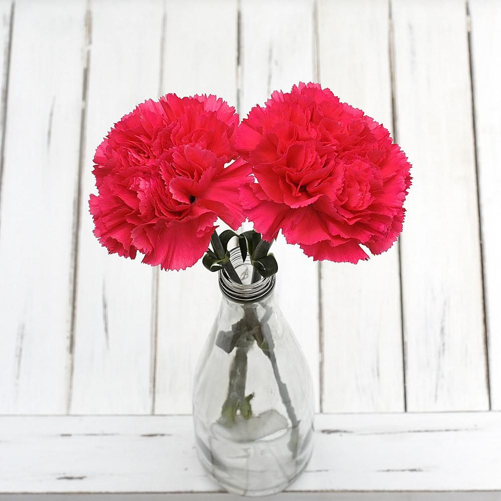 Send Flowers To Bangalore Online Flower Delivery Flower Delivery Flowers Delivered