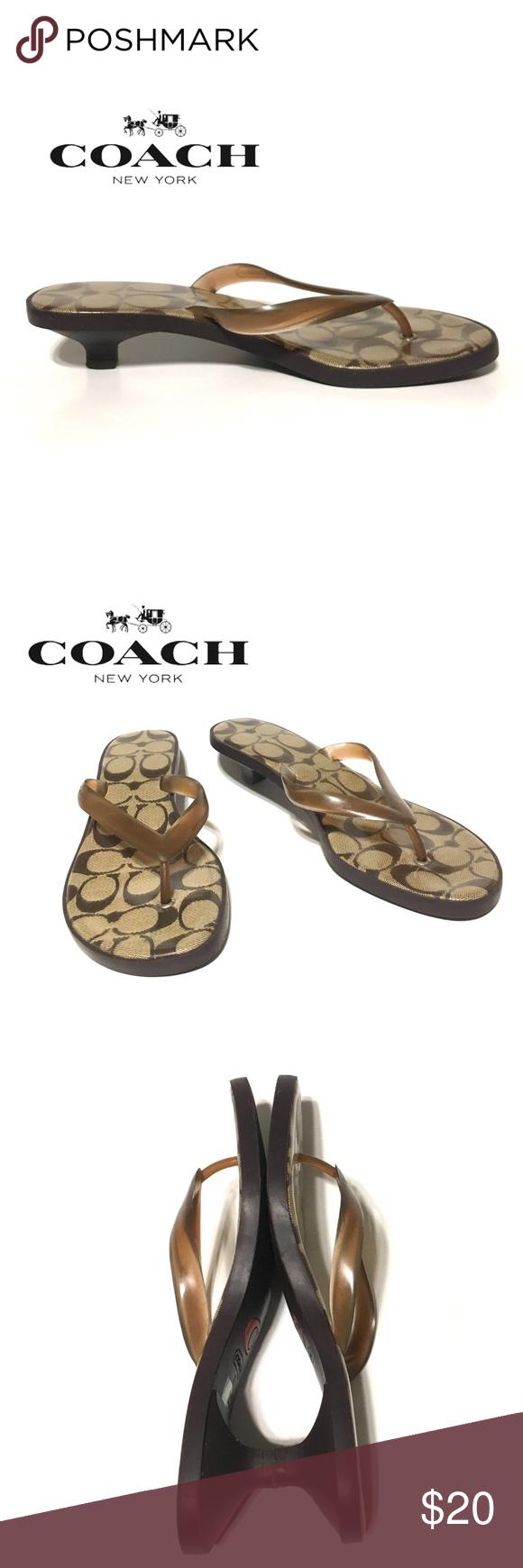 Coach Carin Kitten Heel Thing Sandal Flip Flops Kitten Heels Brown Flip Flops Flip Flop Sandals