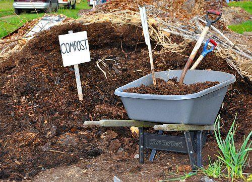 c6a53699eb9b3586e17e90281881e2ea - Is Composted Manure Safe For Vegetable Gardens