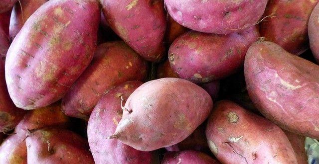 サツマイモは、脂肪燃焼ビタミンであるビタミンB2を含み、糖分の吸収を抑制してくれるクロロゲン酸も豊富です。また食物繊維が多く、便秘解消にも効果的。そして、サツマイモはじゃがいもにくらべて血糖値の上昇がゆるやかでダイエット向きなんです。 #健康、#Food、#料理、#レシピ、#Recipe