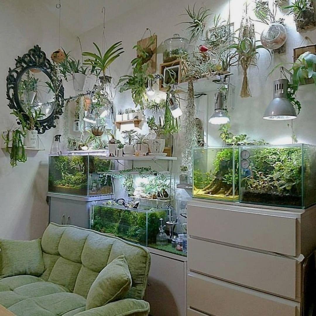 Aquariumfreshwaterfish Wohnideen Haus Dekoration Haus Dekor