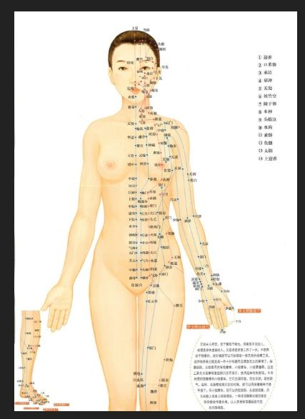Female Form Point Acupuncture Acupressure Points Naturopathy Holistic Healing Yin Yang