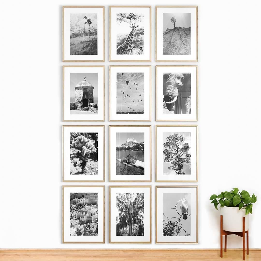 Take the Guesswork Out of Gallery Walls With This New Tool