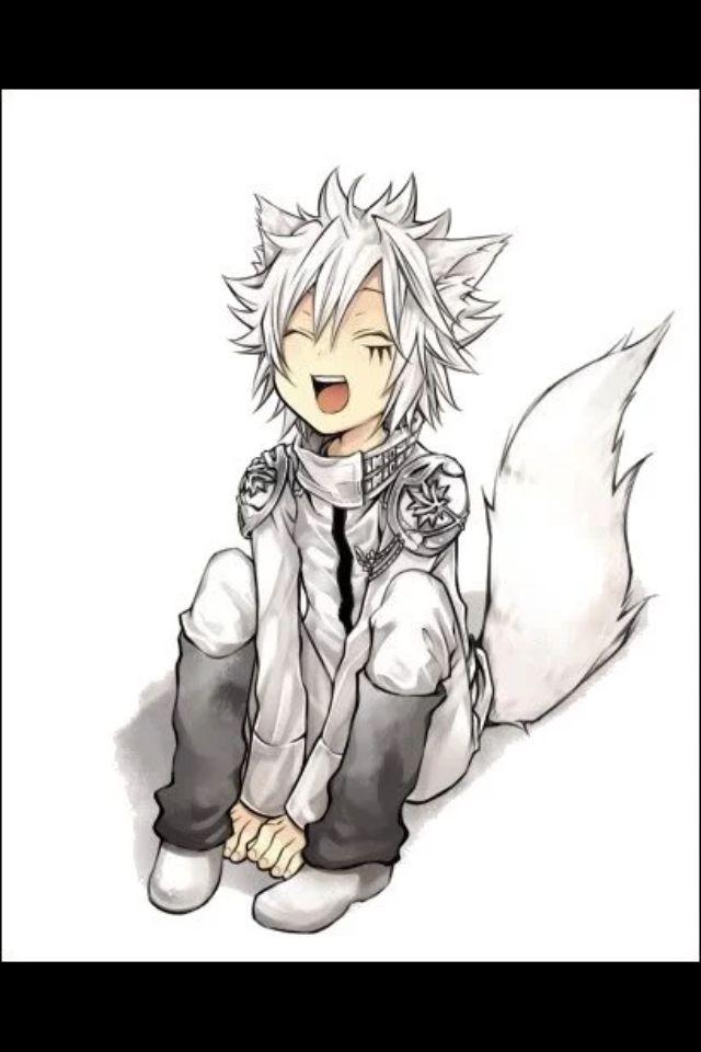 Cute Wolf Byakuran Anime Neko Anime Fox Boy Nekomimi
