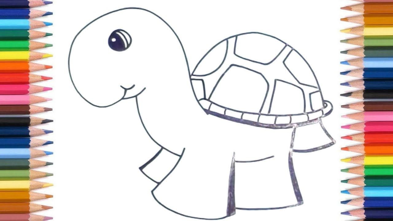 How To Draw Turtles For Kids Easy Kids Easy Drawing Tutorials