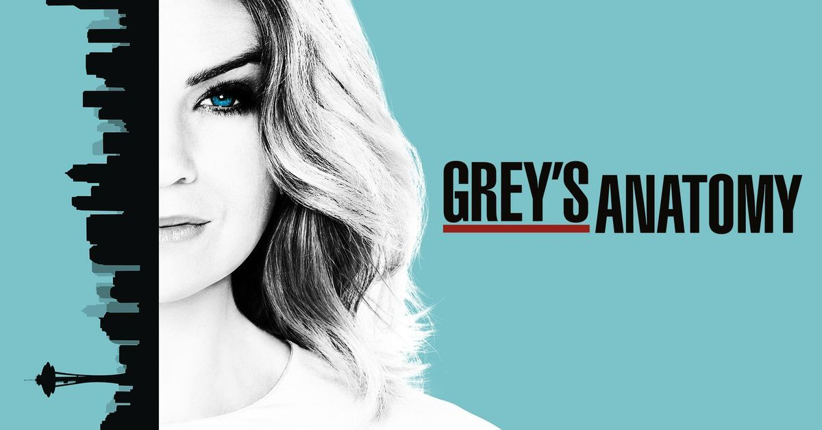 Watch Greys Anatomy Tv Show Abc Netflix And Chill Greys