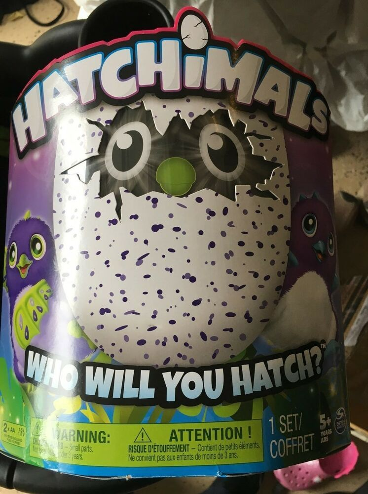 Hatchimal eggs Purple Draggles Brand New in Box AUTHENTIC