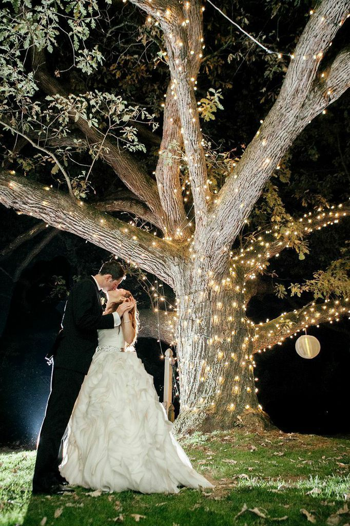 Moonlight Pennsylvania Wedding Under a Sparkling Tree at Aldie Mansion  Wedding Ideas  Wedding