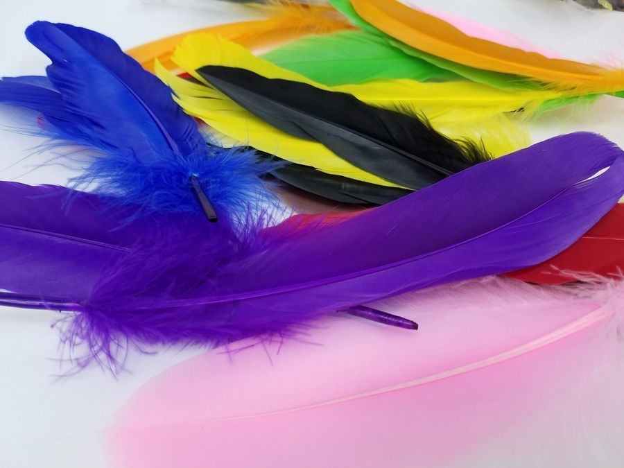 Feathers 18pcs 9 Colours For Decoration Registered Shipping Pcs Feathers Colours Colorful Feathers Colours Feather
