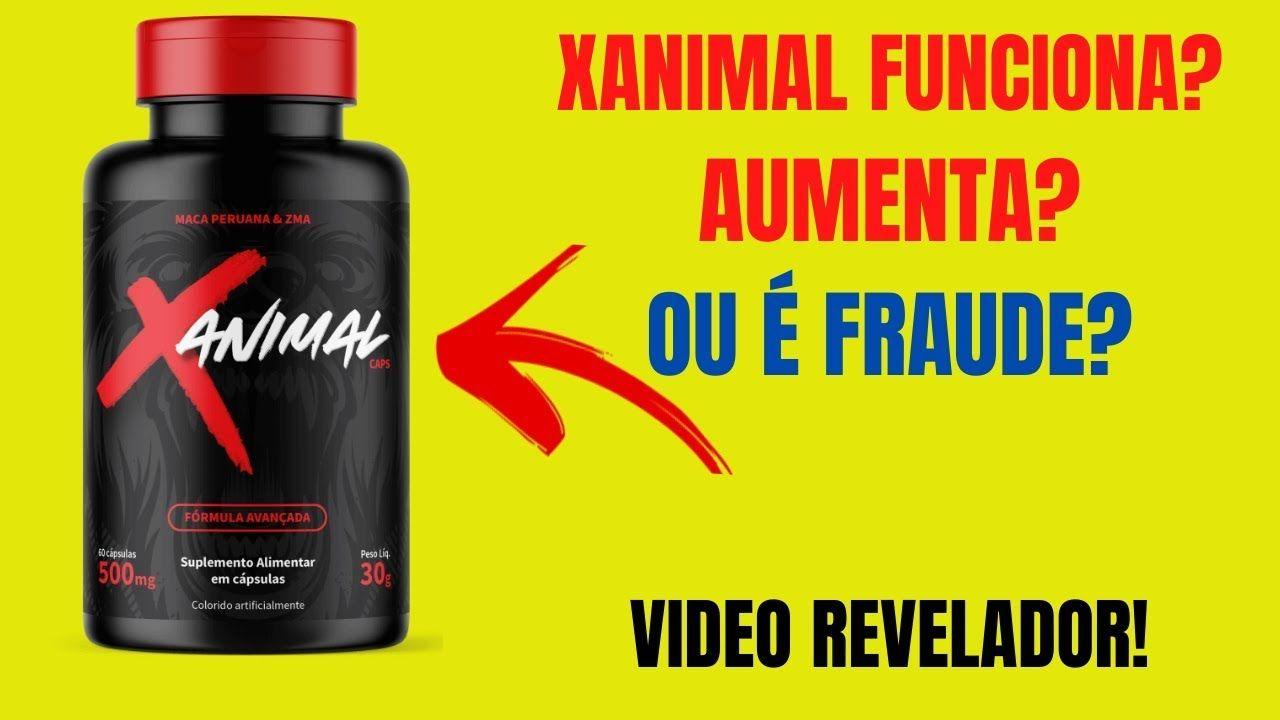 xanimal funciona