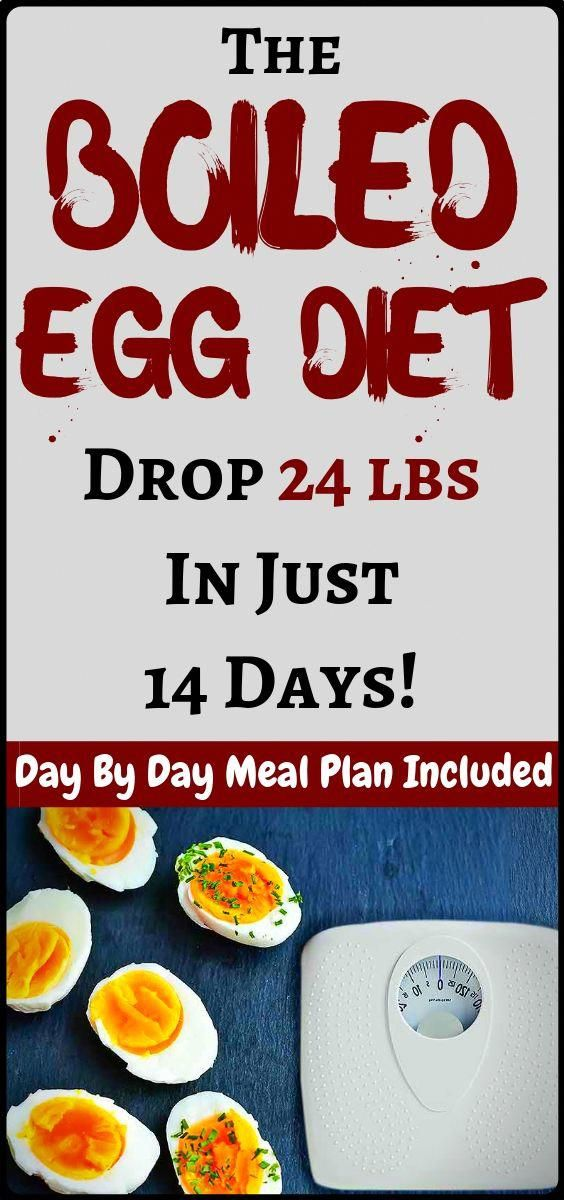 Shedding pounds Together with the Boiled Egg Diet