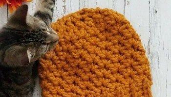 Wildwood Chunky Crochet Beanie