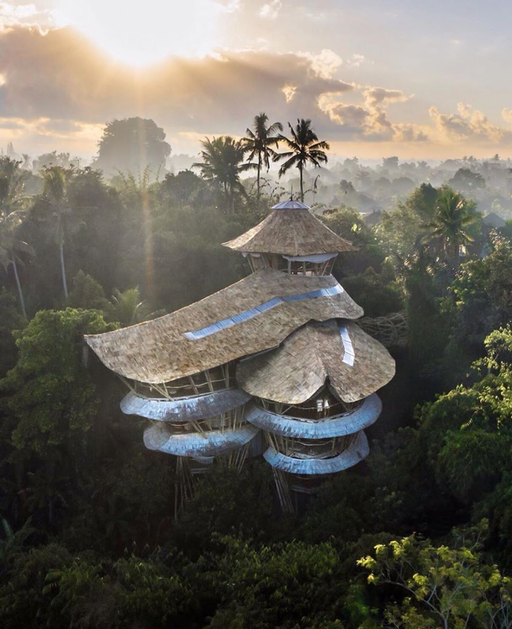 "Best Airbnb On Instagram: ""Fun Fact: Bali's Tallest Bamboo"