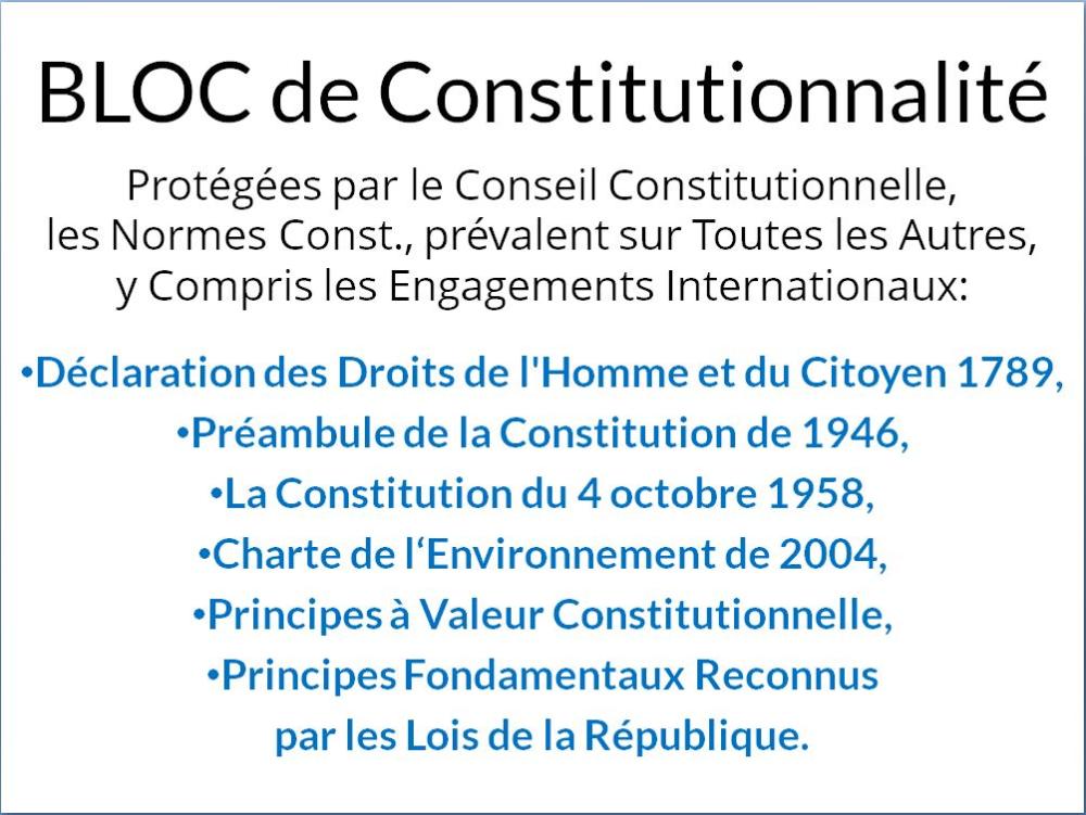 Nicocible Nicocible Conseil Constitutionnel Etre Chretien Douleur Abdominale
