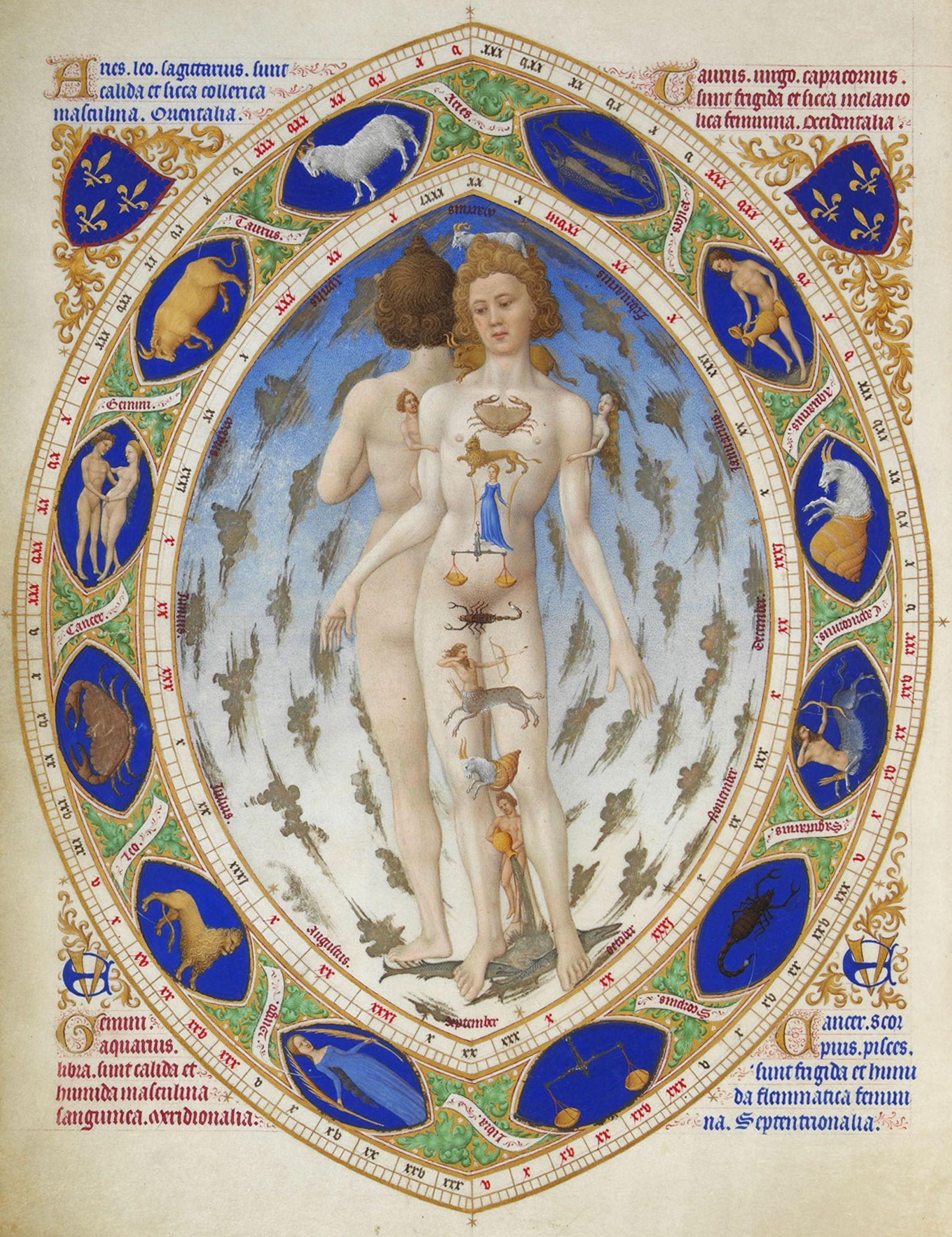 Très riches heures du Duc de Berry, miniatura dell'Uomo Anatomico con la fascia dei segni zodiacali (1412 circa – 1416), conservato oggi nel Musée Condé di Chantilly (©Photo. R.M.N. / R.-G. OjŽda).