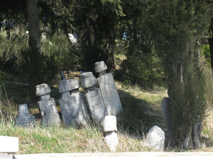 a few of the hundreds of old Ottoman gravestones in Babadağ